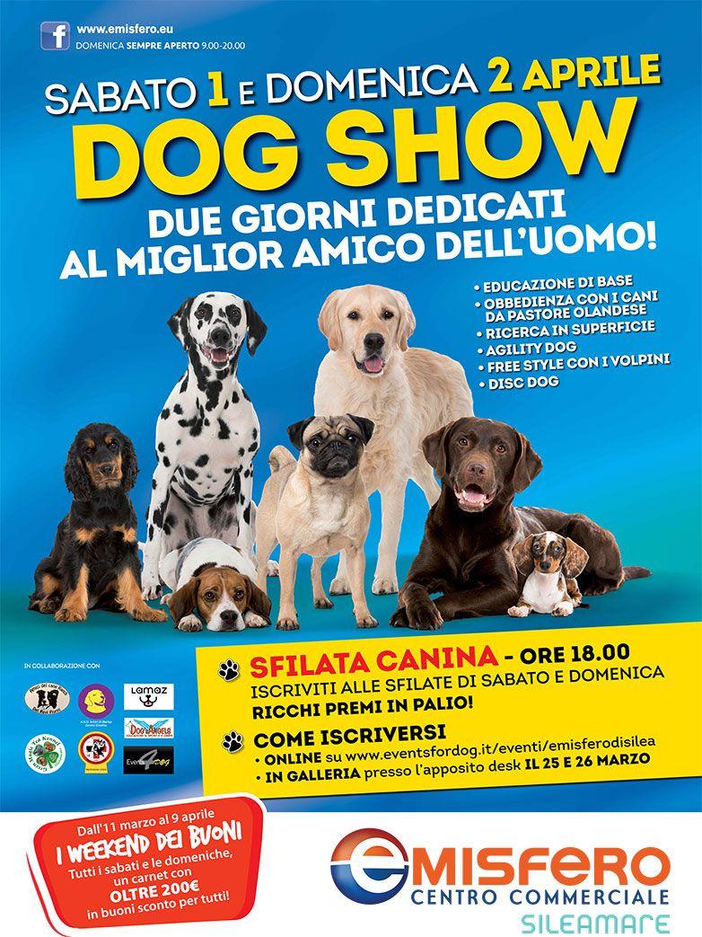 Dog Show a Silea - Due giorni dedicati al miglior ...