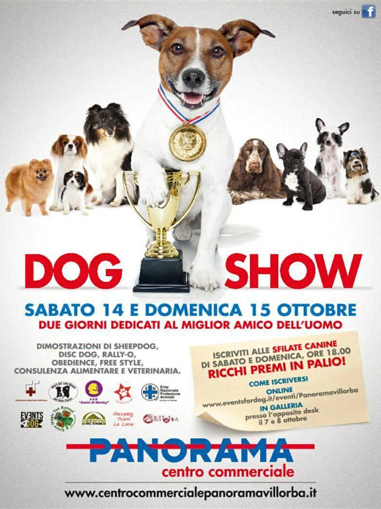 Dog Show al Centro commerciale Panorama Castrette ...