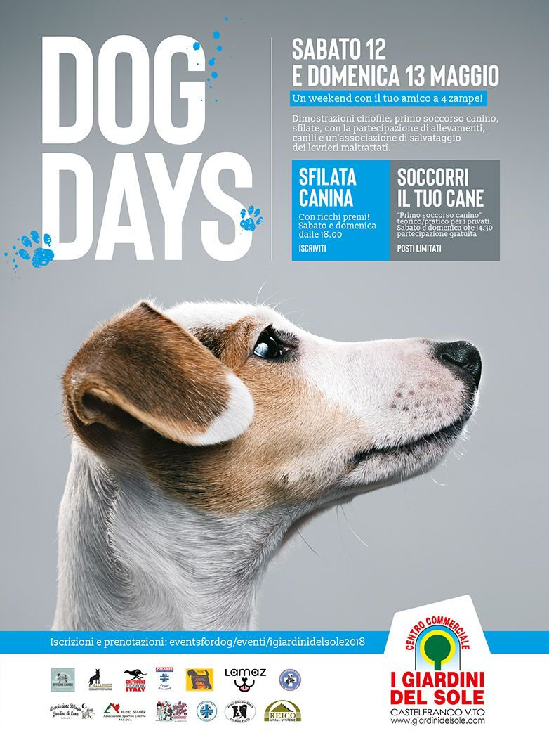 Dog Days a Castelfranco Veneto